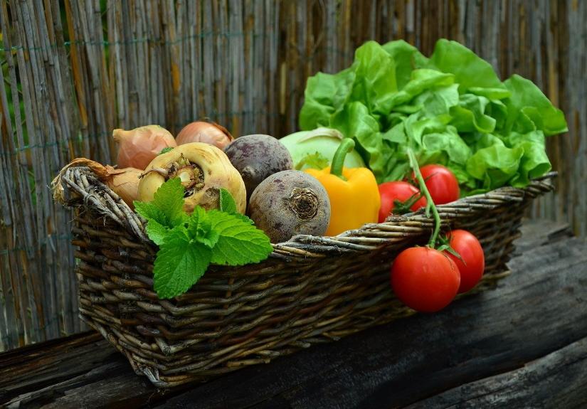 Produção biológica: porque afeta o preço dos produtos?